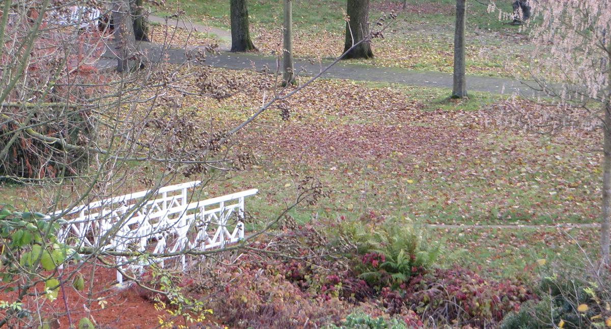 Park der Stiftsruine Lippstadt